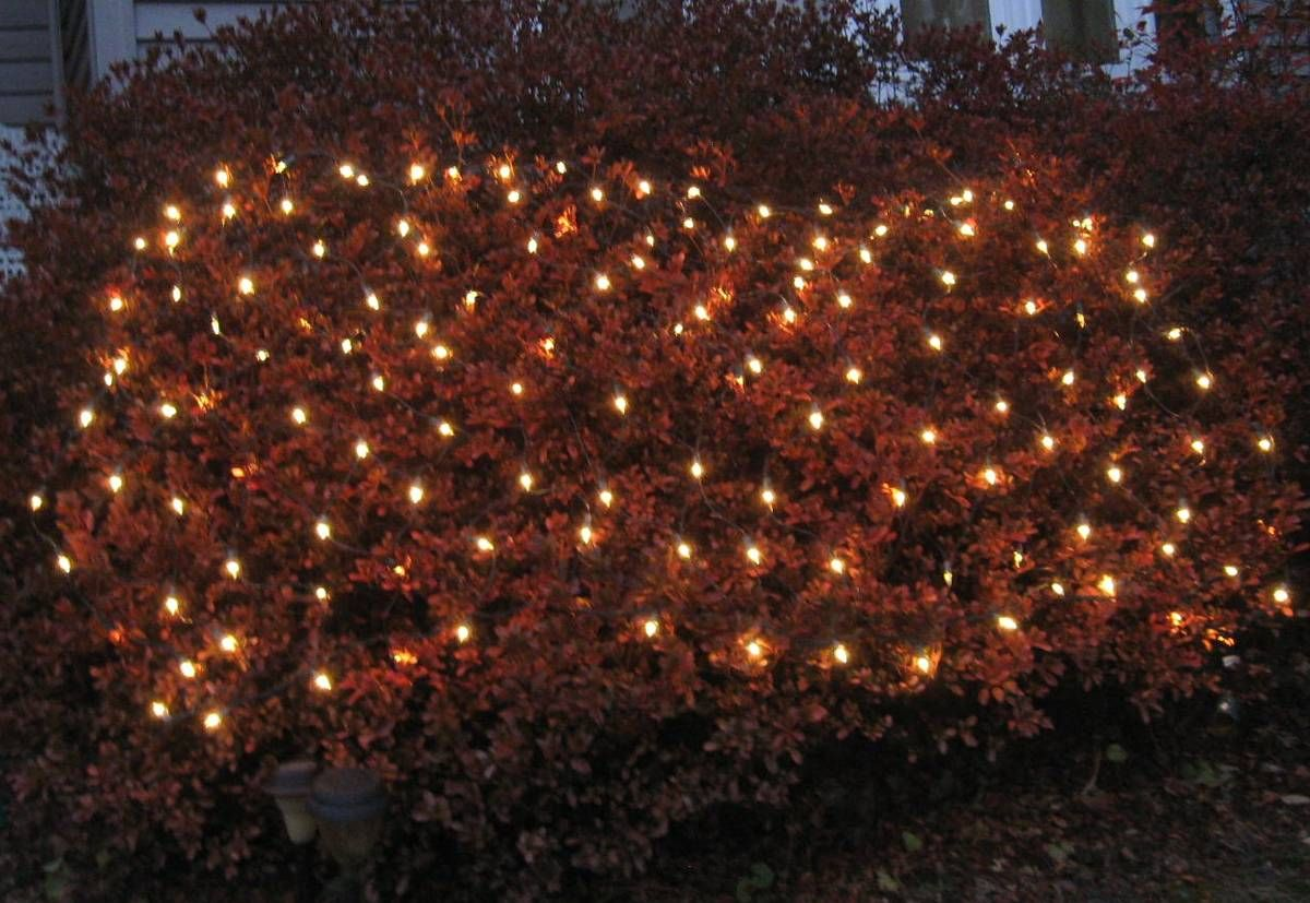 9-NETTING CHRISTMAS LIGHTS - For Sale - Lawn & Outdoors - Paper Shop ...